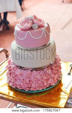Round multi tiered wedding cake with sponge, cream, jam and fruit on a circular tree bark base