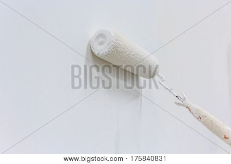 Close up of painter arm painting a wall with paint roller