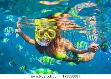 Happy family - girl in snorkeling mask dive underwater with fishes school in coral reef sea pool. Travel lifestyle water sport outdoor adventure swimming lessons on summer beach holidays with child.