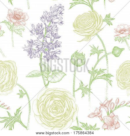 Spring flowers seamless floral pattern. Hand drawing garden plants buttercup lilac freesia anemone. Color and white. Vector vintage illustration. For wrapping fabric fashion paper.