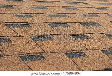Asphalt Roofing Shingles Background. Close up on Roof Shingles - Roofing Construction.