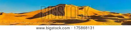 Seas of dunes of Erg Chebbi near Merzouga in southeastern Morocco