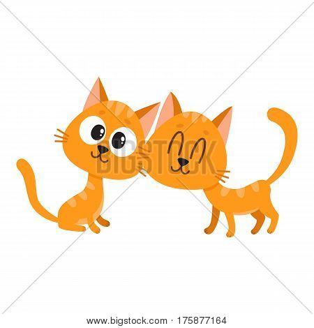 Two cute and funny red cat, kitten characters, looking curiously, interested, cuddling, cartoon vector illustration isolated on white background. Couple of cute little red cat, kitten characters