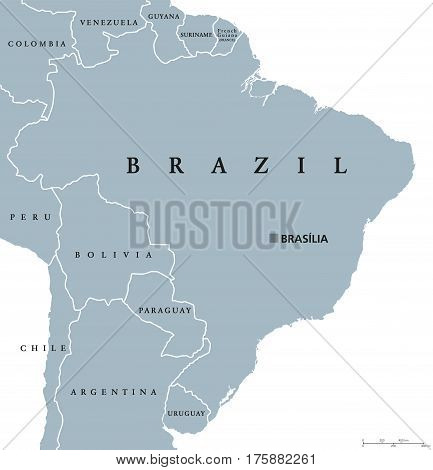 Brazil political map with capital Brasilia, national borders and neighbors. Federal republic and country in South America. Gray illustration isolated on white background. English labeling. Vector.