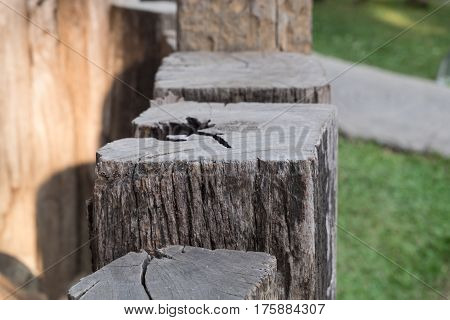 Close up view of old vintage chock wood fence design countryside style.