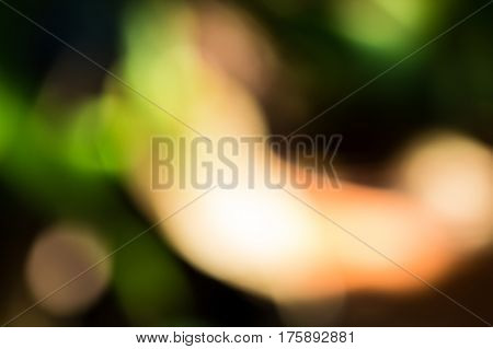Abstract background by shooting out of focus on green leaf