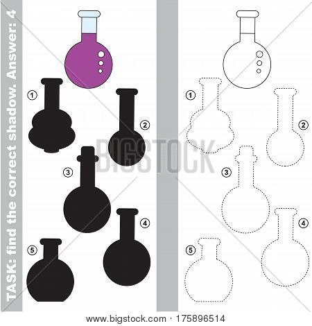 Vial with different shadows to find the correct one, compare and connect object with it true shadow, the educational kid game with simple level of difficulty.