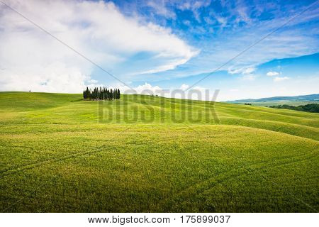 Panoramic View Of Scenic Tuscany Landscape In Val D'orcia, Italy
