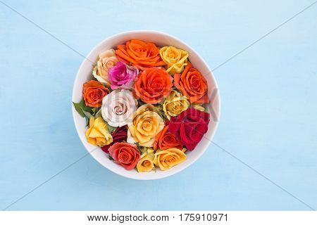 Colorful roses in a bowl on blue background