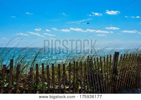 AN ISOLATED BIRD FLYING OVER THE BEACH WITH THE OCEAN, SKY AND CLOUDS IN THE BACKGROUND AND A SAND FENCE IN THE FOREGROUND