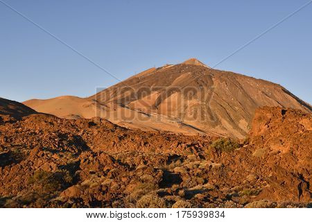 Top of Teide Volcano in the morning lite with some vegetation in foreground picture from Tenerife Spain.
