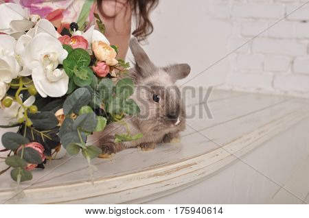 Gray cute furry hare pet with flowers summer flora