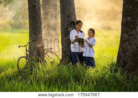 Two Asian girls are reading happily in the middle of the atmosphere with pure fields and air.