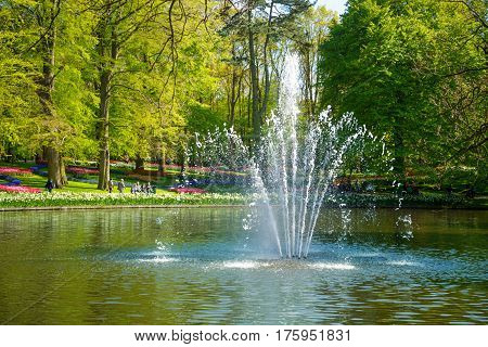 Pond with a fountain in the Keukenhof park in Netherlands. In the background to blur the tourists walk in the park Keukenhof, Holland, Netherlands.