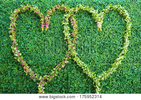 Two hearts of flowers on a background of greenery