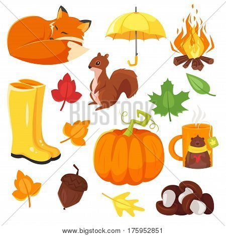 Vector cartoon style set of autumn symbols: fox, pumpkin, yellow boots and others. Icon for web. Isolated on white background.
