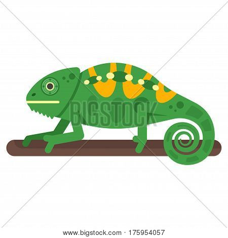 Vector flat style illustration of chameleon. Icon for web. Isolated on white background.