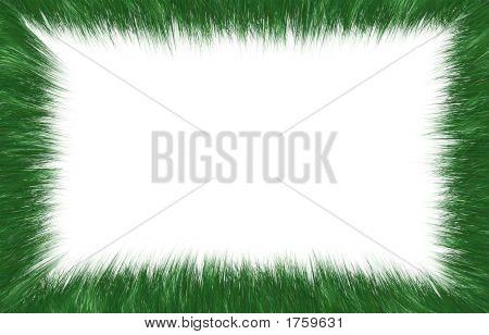 Decorative Grass Frame