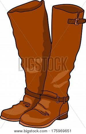 The pair brown knee-length boots on a white background.