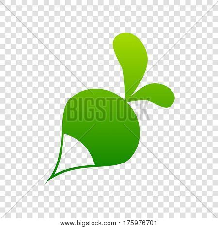Radish Simple Sign. Vector. Green Gradient Icon On Transparent Background.
