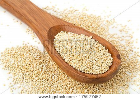 Raw uncooked whole quinoa seed in wooden spoon on white background