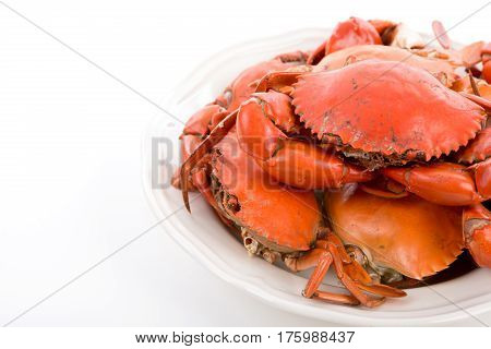 Cooked crabs on a white background .