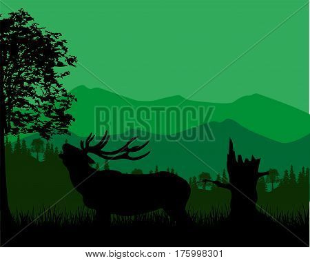 Wildlife deer in wild mountain terrain.Vector illustration