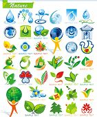 COLLECTION_2   Ecology and botanic Icon Set for design use, vector illustration. Series symbols for Web. A set of abstract color element corporate templates. Just place your own company name. poster