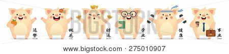 2019 Chinese New Year - Year Of The Pig. Set Of Cute Cartoon Pig In Different Pose Isolated On White