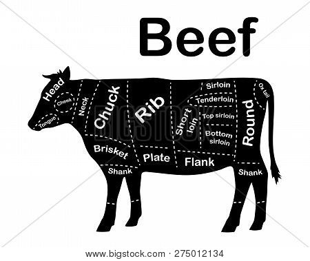 Meat Cuts - Beef. Diagrams For Butcher Shop. Scheme Of Beef. Animal Silhouette Beef. Guide For Cutti