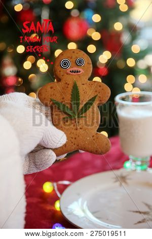 BAD DRUG TRIP. Santa Claus has a BAD TRIP after eating Marijuana Edible Gingerbread Man Cookies. Santa Claus gets stoned. bad cookie.