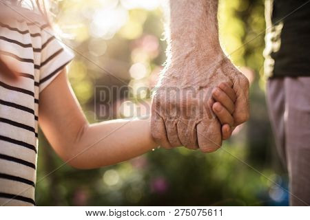 Hands Of Kid And Old Man With Blurred Foliage On Background
