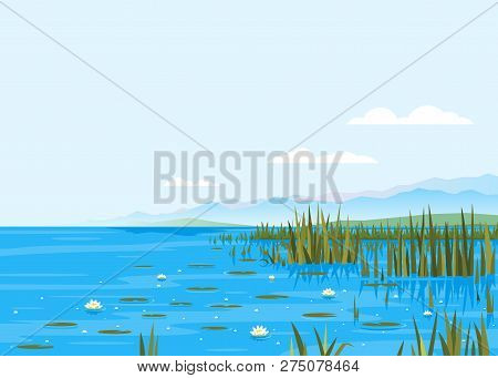 Lake With Water Lily And Bulrush Plants Nature Landscape Illustration, Fishing Place, Pond With Blue