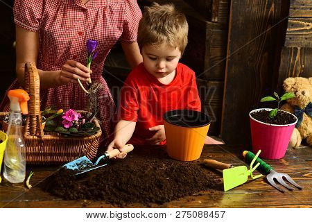 Growth Concept. Little Boy Plant Flower In Soil To Grow, Growth. Growth And Development. Growth Seas