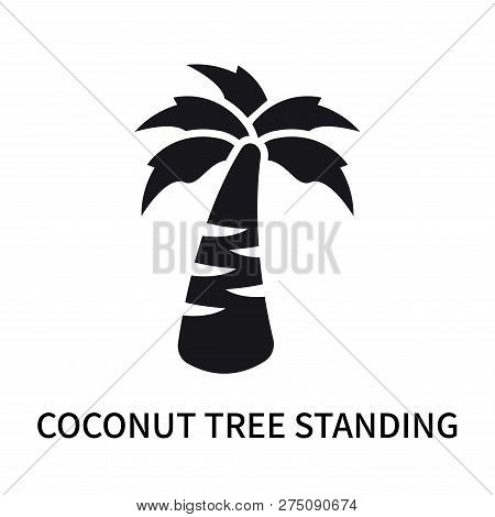 Coconut Tree Standing Icon Isolated On White Background. Coconut Tree Standing Icon Simple Sign. Coc