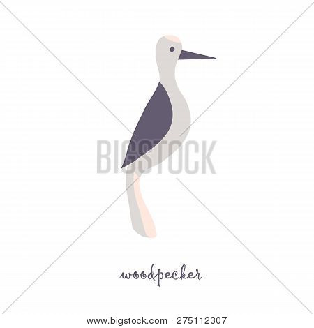 Cute Woodpecker Bird Vector Color Characters Set. Sketch Woodpecker In Pastel Grey, Pink Colour. For