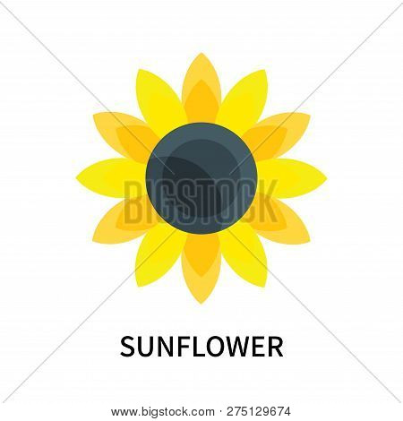 Sunflower Icon Isolated On White Background. Sunflower Icon Simple Sign. Sunflower Icon Trendy And M