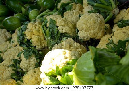 Heaps Of Cabbages (brassica Oleracea Var. Capitata ), Cauliflowers (brassica Oleracea Var. Botrytis