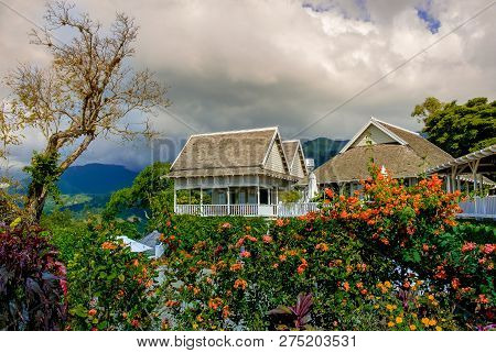 Kingstown Hill, Jamaica, Dec 2018, Strawberry Hill Hotel In The Blue Mountains