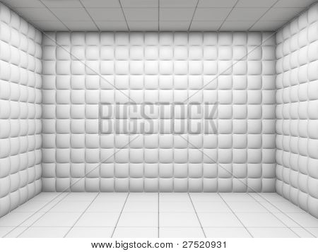 White Empty Padded Room