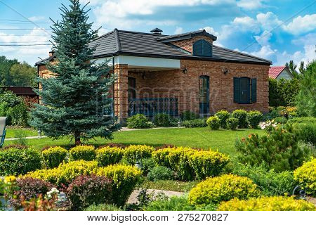 Beautiful Landscaping With Beautiful Plants And Flowers. Natural Landscaping Panorama In Home Garden