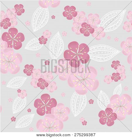 Seamless Sakura Flowers Background, Pink Blooming On Grey, Ornament White Leafs, Design Element Stoc