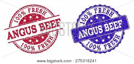 Grunge 100 Percent Fresh Angus Beef Seal Stamps In Blue And Red Colors. Stamps Have Draft Style. Vec