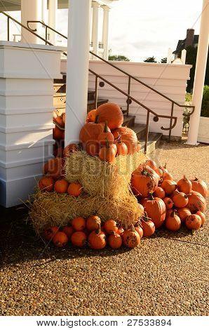 Pumpkin Steps
