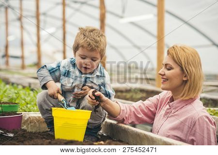 Mothers Day. Happy Mothers Day. Mother And Son In Greenhouse At Mothers Day. Mothers Day Holiday.