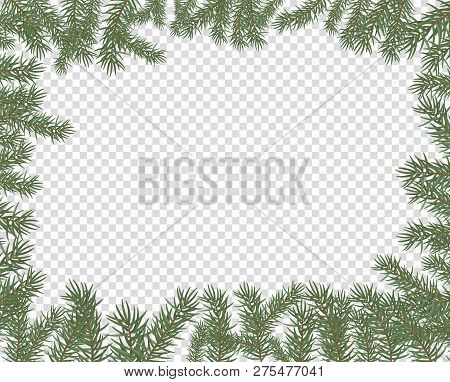 Vector Illustration Of A Frame Of Fir Branches. New Year, Merry Christmas Spruce Conifer Decor, Bord