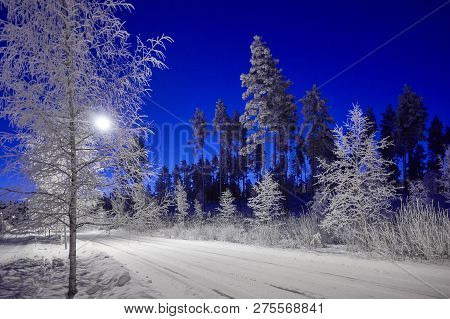 A Road Through Peaceful Winter Night Scene Under Beautiful Blue Sky. Snow Cowered Trees In Very Cold
