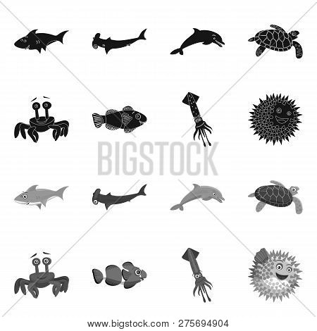 Isolated Object Of Sea And Animal Icon. Set Of Sea And Marine Stock Symbol For Web.