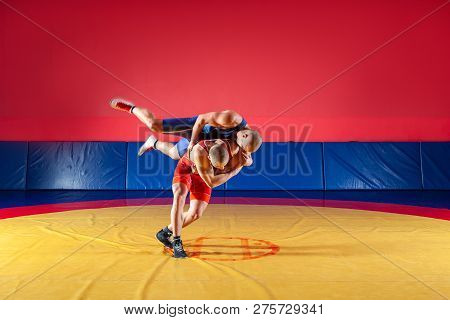 poster of Two young men in blue and red wrestling tights are wrestlng and making a hip throw on a yellow wrestling carpet in the gym. The concept of fair wrestling