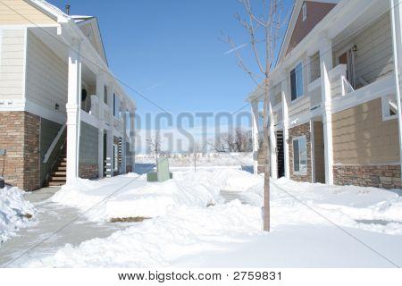 Snowy Area